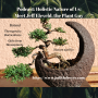 Artwork for Podcast: Holistic Nature of Us: Meet Jeff Eleveld