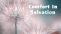 Artwork for Comfort In Salvation