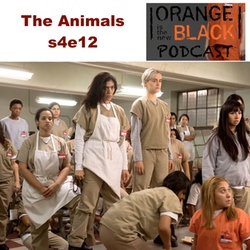 The Animals s4e12 - Orange is the New Black Podcast