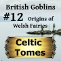 Artwork for Origins of Welsh Fairies - British Goblins CT012