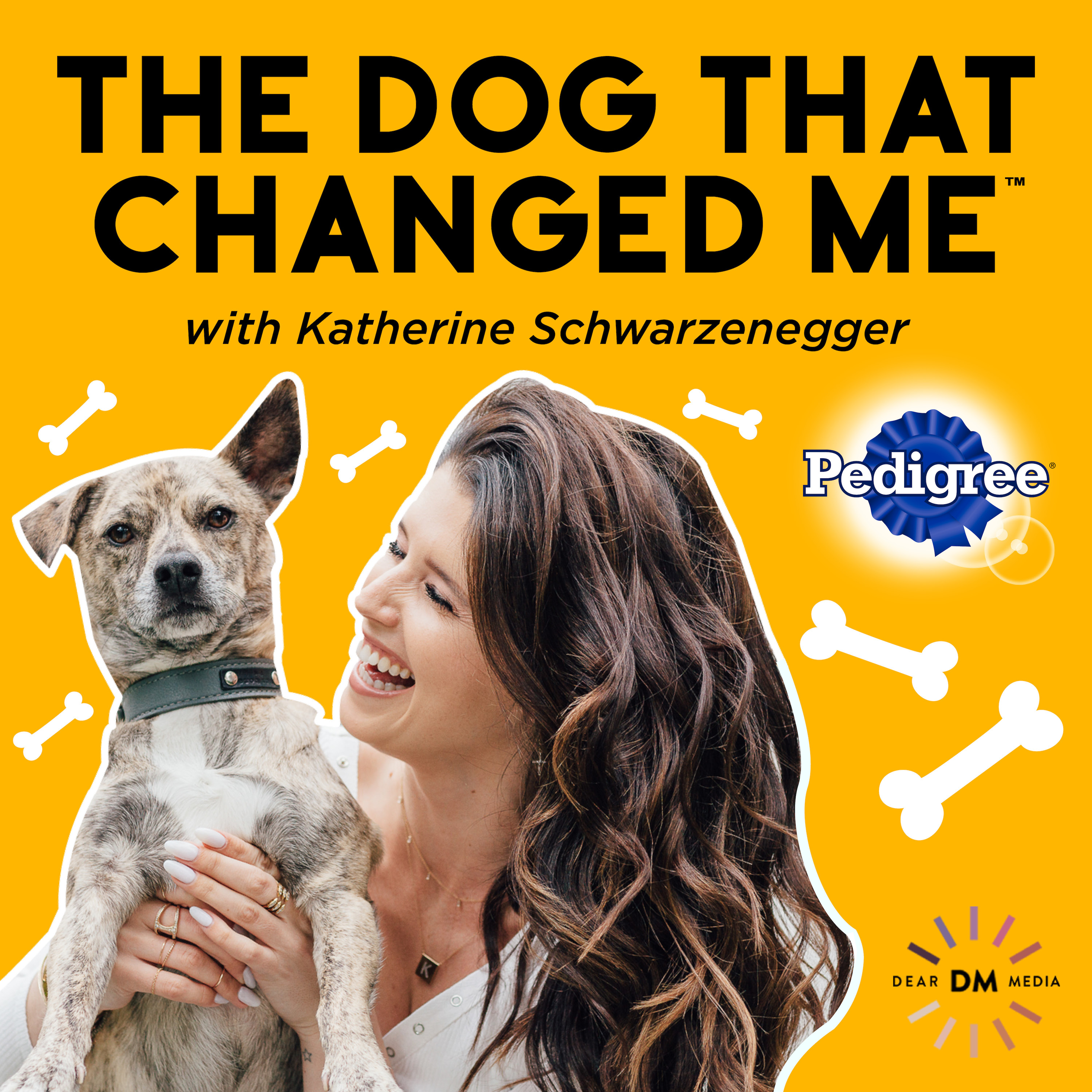 The Dog That Changed Me show art