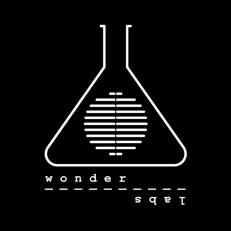 WonderLabs with Chris Richardson show art