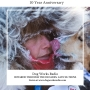 Artwork for Iditarod Through the Decades The Late 20-teens
