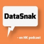 Artwork for DataSnak ep 111 verdensmål og digitalisering