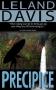 Artwork for Precipice: A novel by Leland Davis
