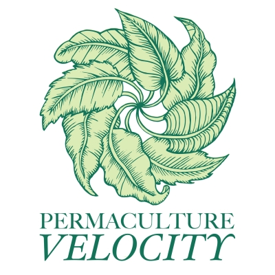 Permaculture Velocity with Soirée-Leone show image