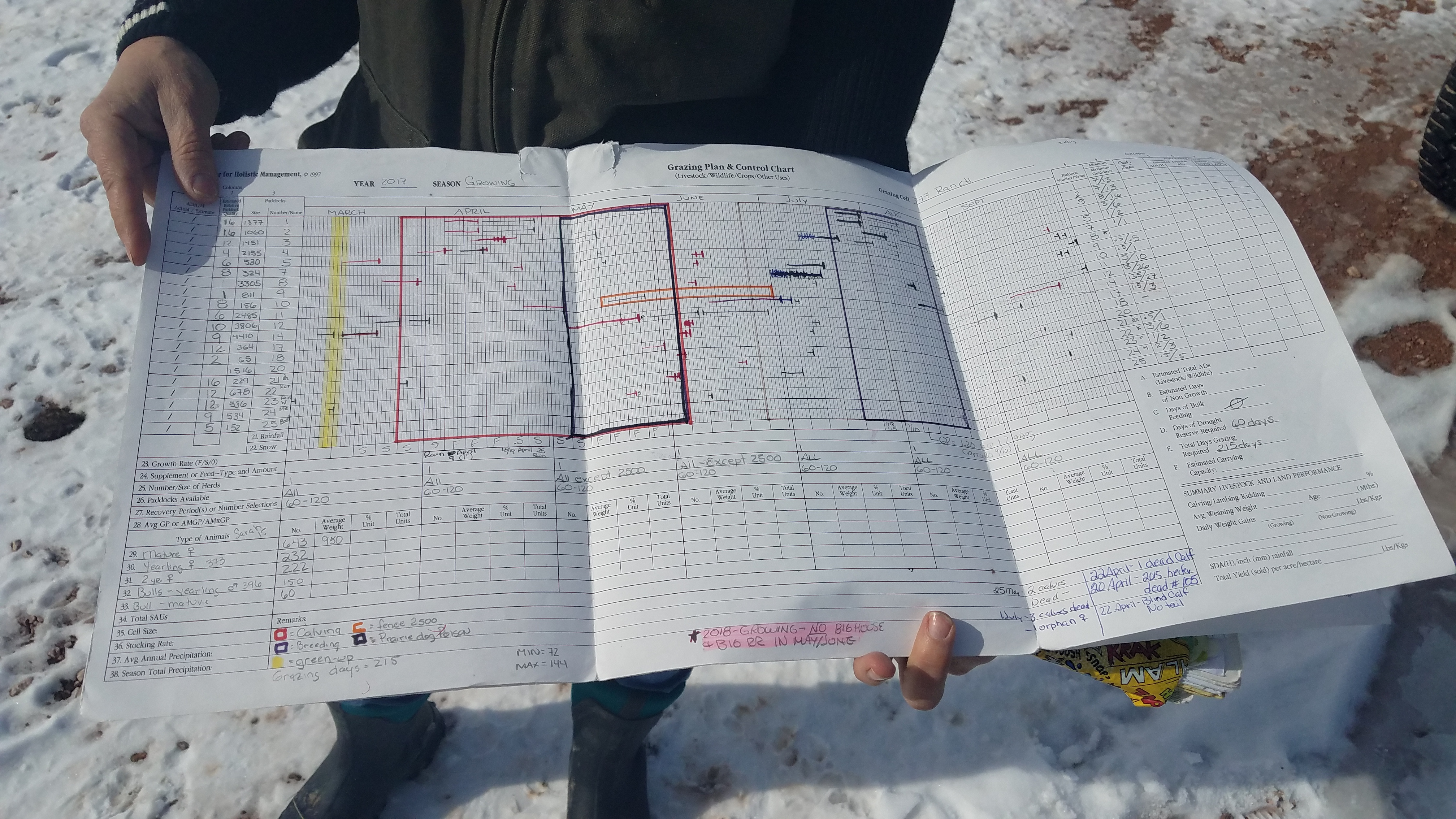 Their Holistic Planned Grazing worksheet