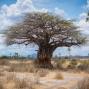 Artwork for Pour l'entrepreneur africain, ce qui semble être des difficultés constitue des opportunités