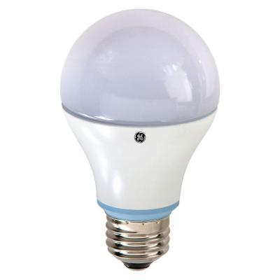GE Reveal 60W bulb