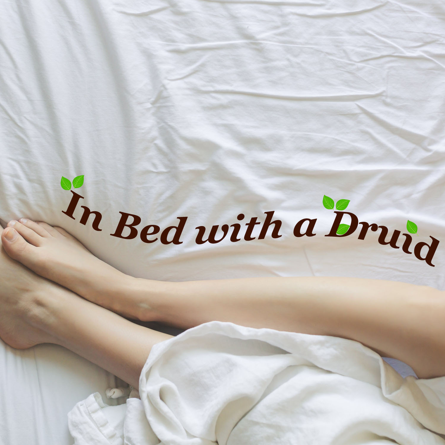 In Bed with a Druid show art