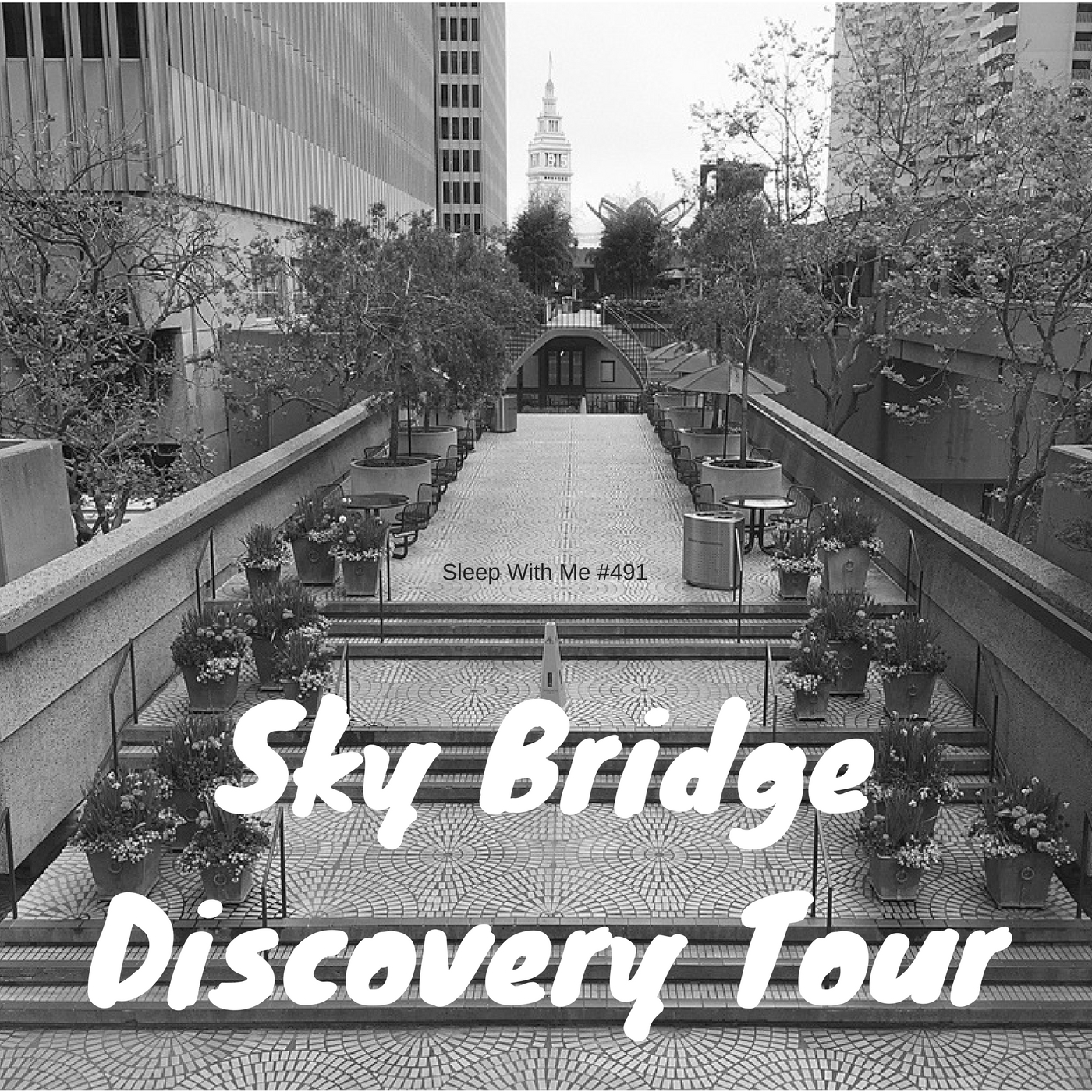 492 Skybridge Discovery Tour
