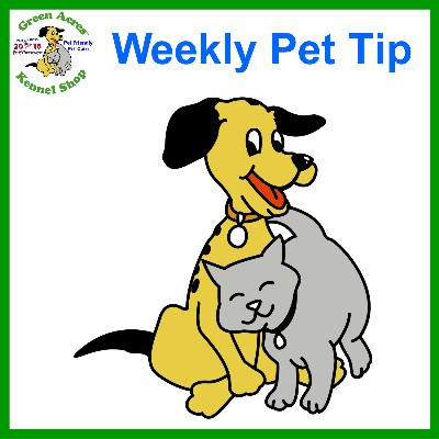 Pet Tip - AAHA Behavior Guidelines