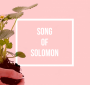 Artwork for Song Of Solomon: A Season For Everything