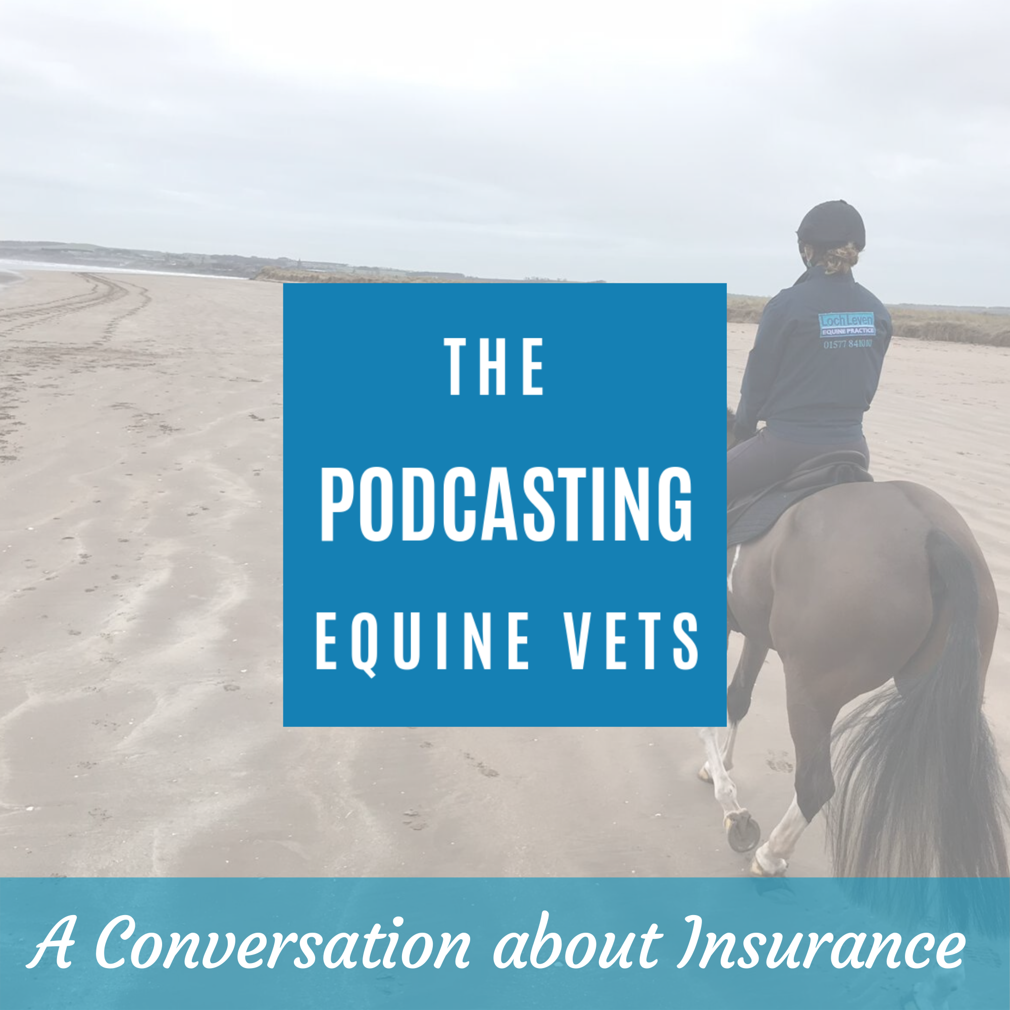 A Conversation About Horse Insurance