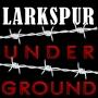 Artwork for Larkspur Underground - Trailer