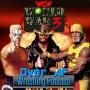 Artwork for WCW World War 3 1995