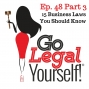 Artwork for Ep. 48 Part 3 Fifteen Business Laws You Should Know