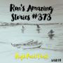 Artwork for RAS #373 - High Point Trail