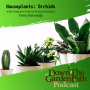 Artwork for House Plants : Orchids