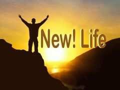 New Life - Easter 'Jesus Has Arisen'