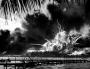 Artwork for MSM 528 William Ned Locke - Surviving Pearl Harbor