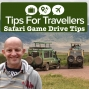 Artwork for Safari Game Drive Tips For Travellers Podcast #268