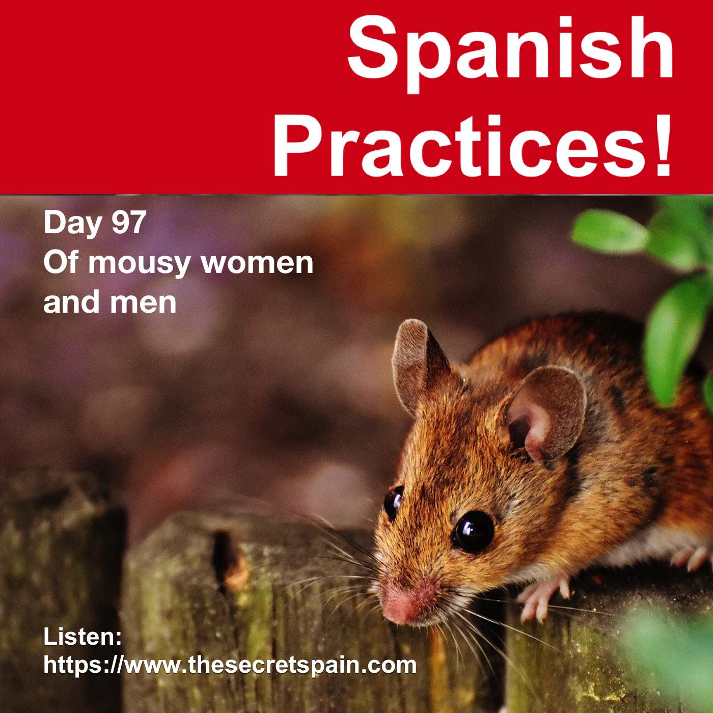 """Day 97 - """"Of mousy women and men"""""""