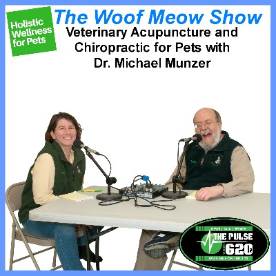 Holistic and Complementary Wellness for Pets - Veterinary Acupuncture and Chiropractic for Pets with Dr. Michael Munzer - All Creatures Acupuncture