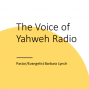 Artwork for God's Voice