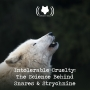 Artwork for Intolerable Cruelty: The Science Behind Snares and Strychnine