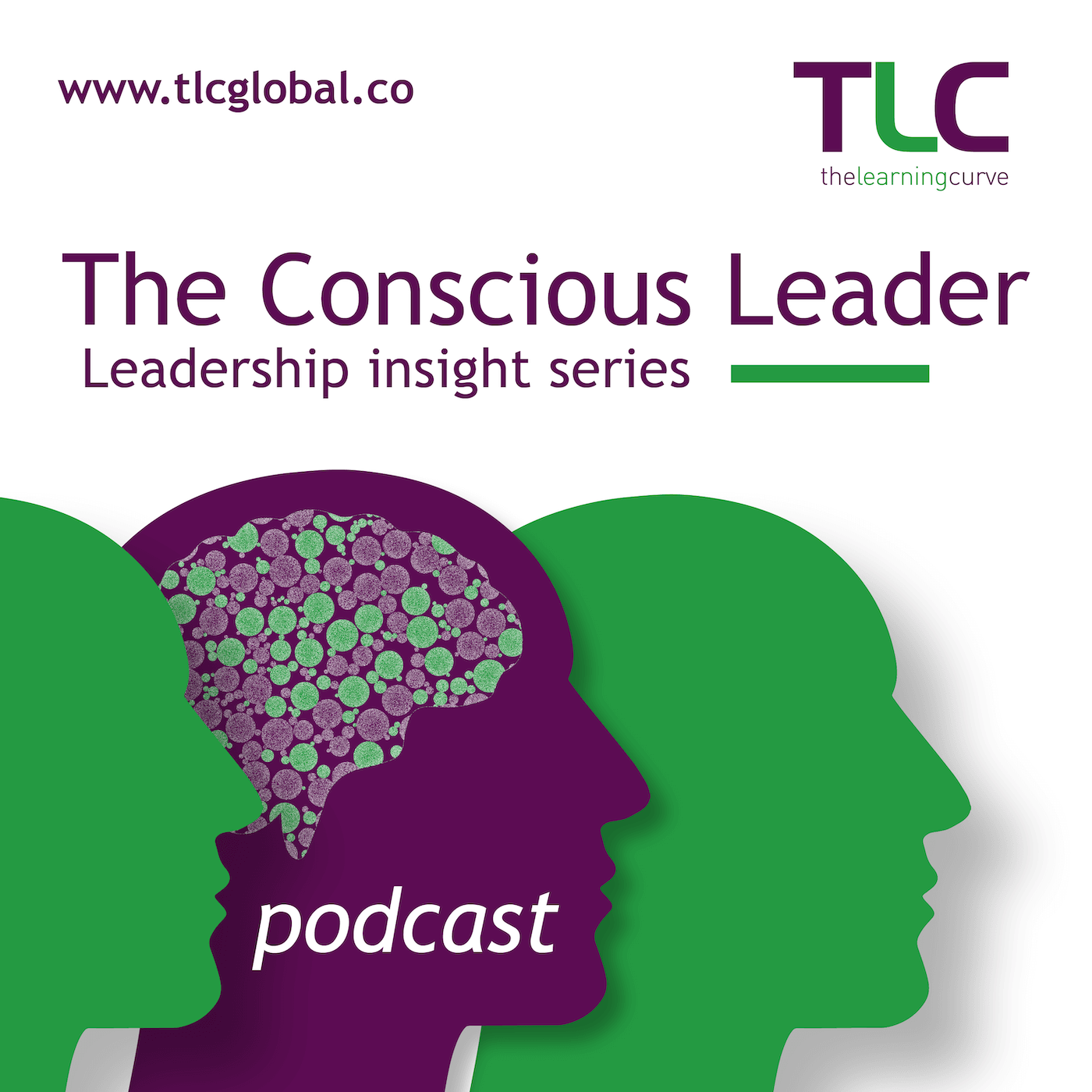 The Conscious Leader show art