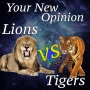 Artwork for Your New Opinion: Episode 3 - Lions Vs Tigers