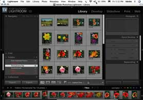 Adobe Photoshop Lightroom 1.0 Getting Started