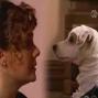 "Artwork for Episode 119 - ""Sauced in Austen"" Episode 23"