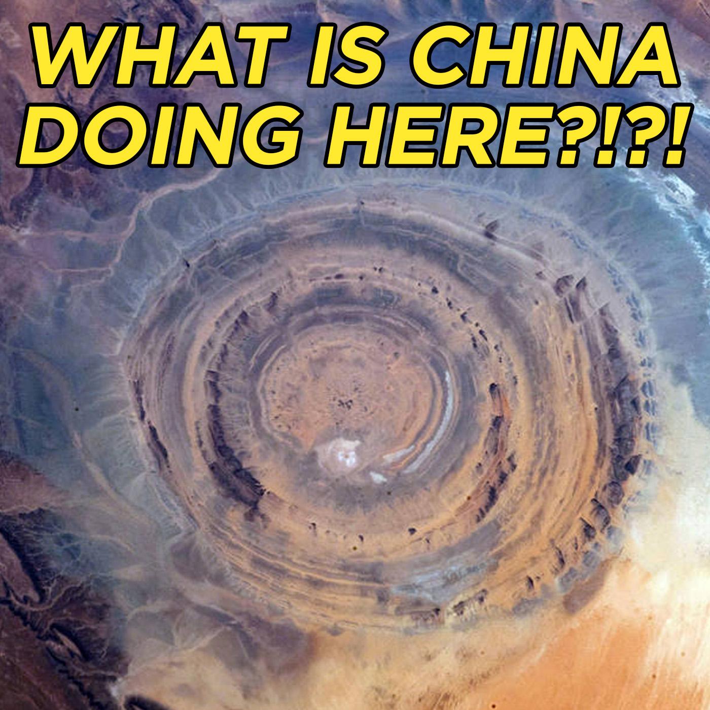 #52 China's Invasion of Africa | Nasser Weddady show art