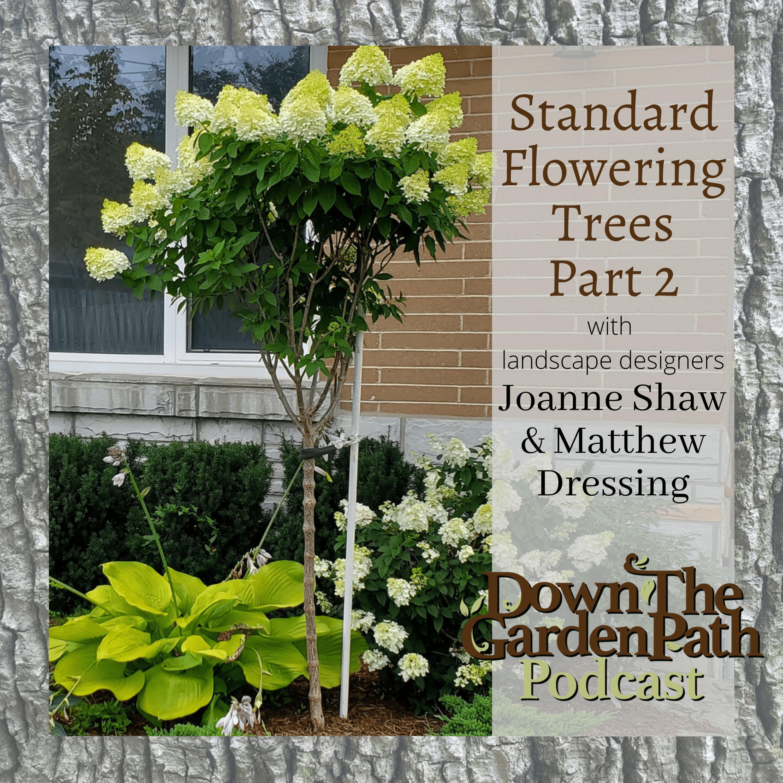 Artwork for Standard Flowering Trees Part Two