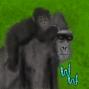 Artwork for Gorillas