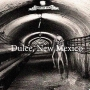 Artwork for Dulce, New Mexico Aliens