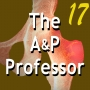 Artwork for End-of-Term Reviews Help Keep Your Course on Track | TAPP Episode 17