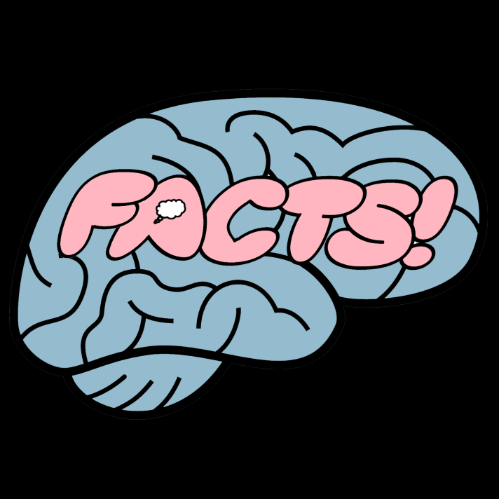 Your Brain on Facts show art