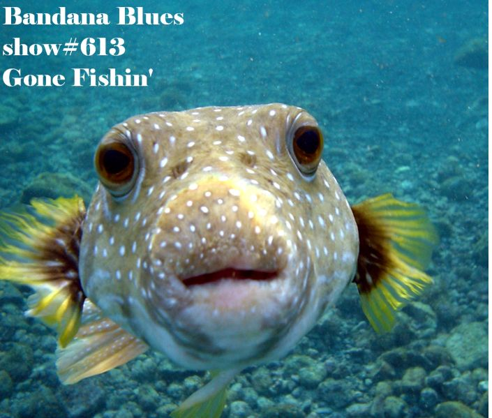 Bandana Blues #613 Gone Fishin'