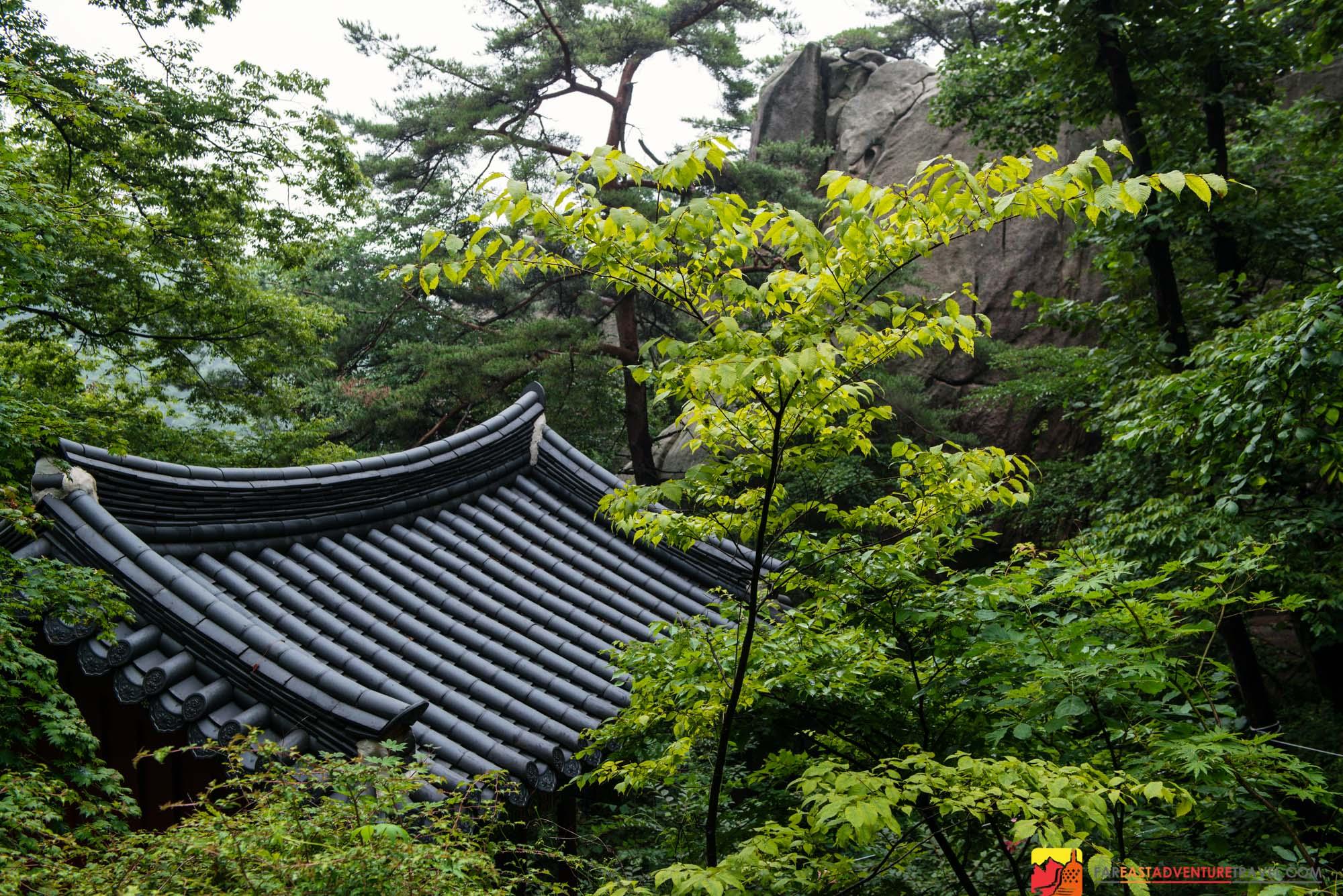 Artwork for Seoul, South Korea-Hiking Guide For Namsan-Guardian Mountain