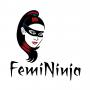 Artwork for The FemiNinja: Creativity, Courage, and Brain Power