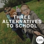 Artwork for 366 Three Alternatives To School