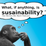 Artwork for What, if Anything, is Sustainability?