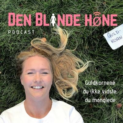 Den Blinde Høne show image