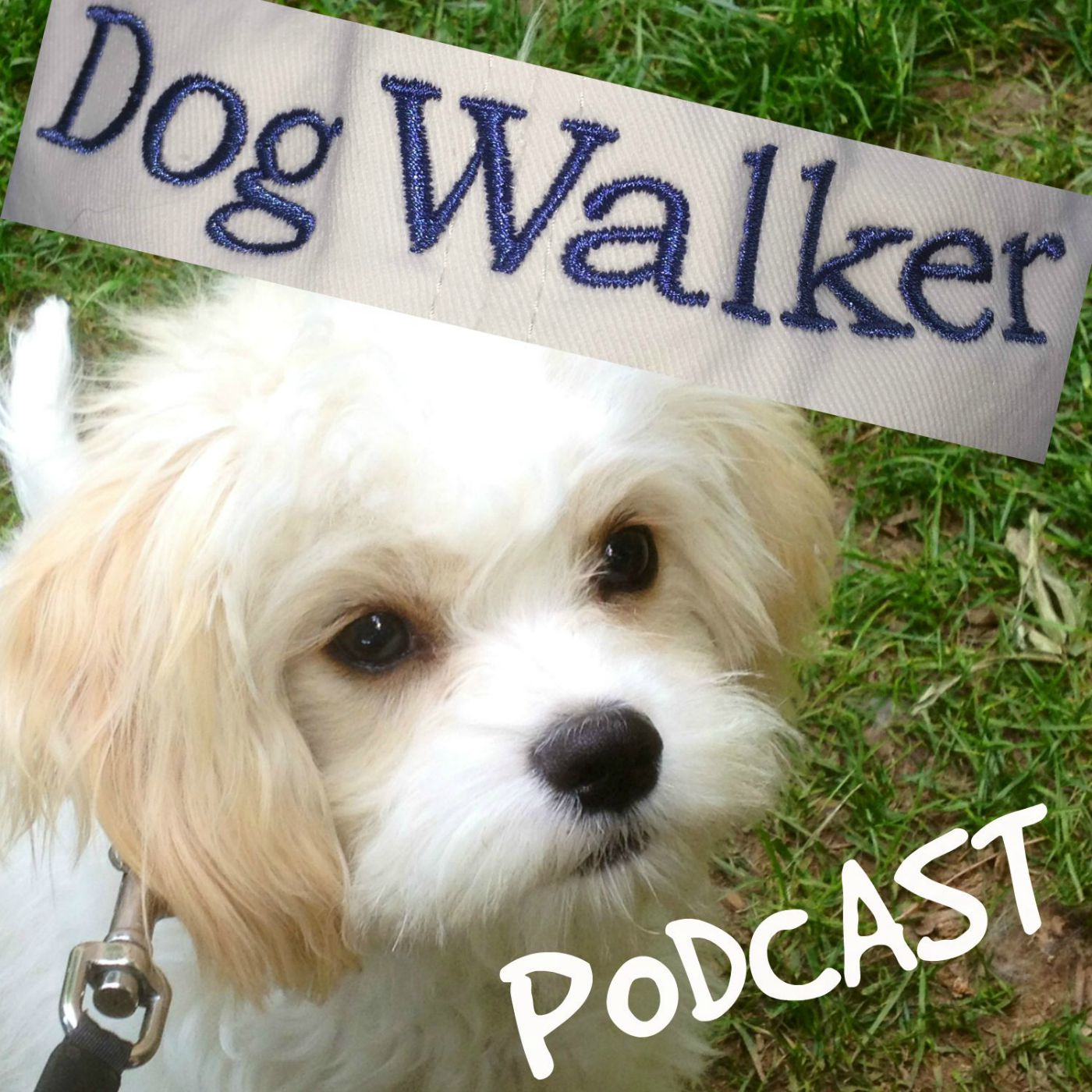 How To Start and Operate a Dog Walking and Pet Sitting Business show art