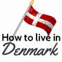 Artwork for Driving in Denmark