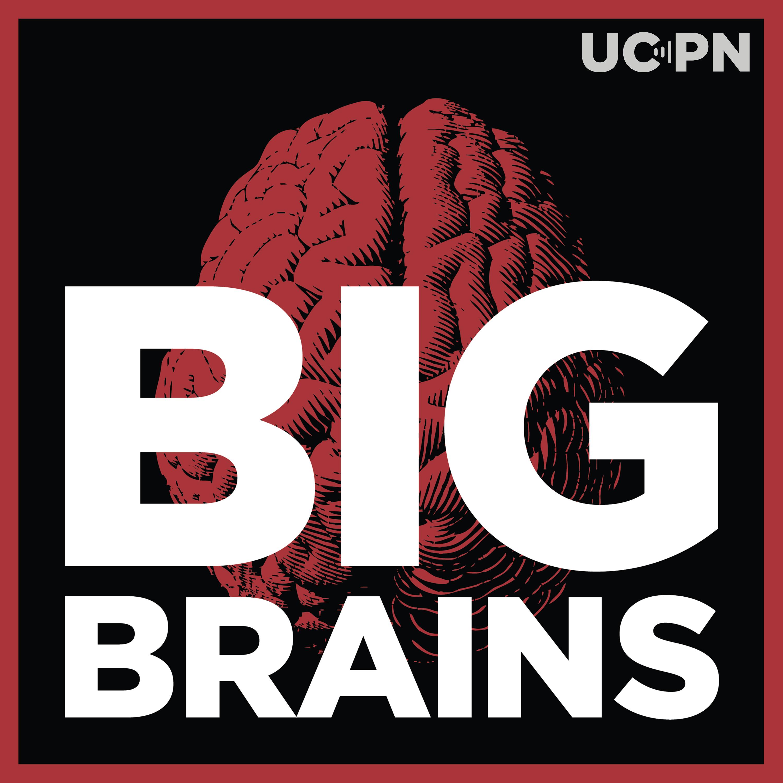 Big Brains show art