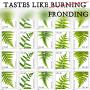 Artwork for Tastes Like Burning 152: Short Schtick